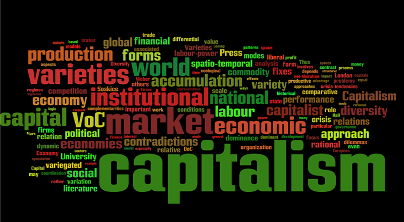 f-2011-variegated-capitalism-final1.png